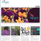 Mingos website